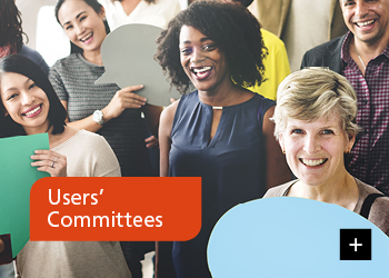 Users' Committees